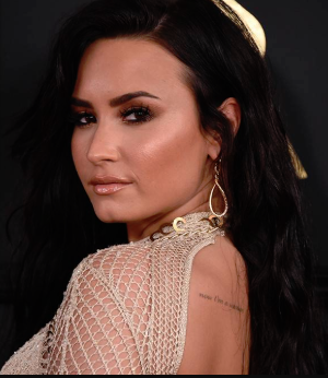 Demi Lavato Instagram